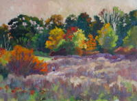 Rock Meadow Eve Backlit, 12 x 16